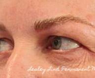 brows bldshd 1.jpg