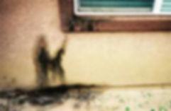 beehive in wall.jpg
