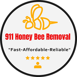 Honey Bee Removal Houston Tx.png