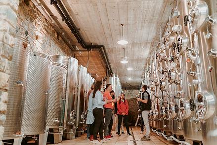 20190530-Wine-Tour-Goriska-Brda-Vipava-I