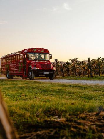 Vinska-Fontana-Marezige-Vinski-Avtobus.j