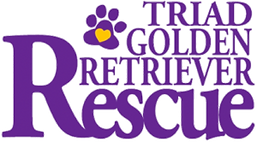 triad-golden-retriever-rescue-logo-300x1