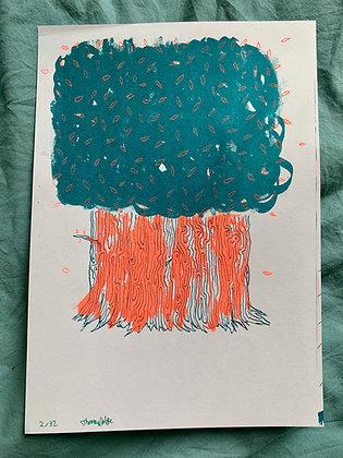 The Box Tree - Ltd Ed Riso Print