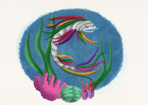The Rainbowfish Is Swimming