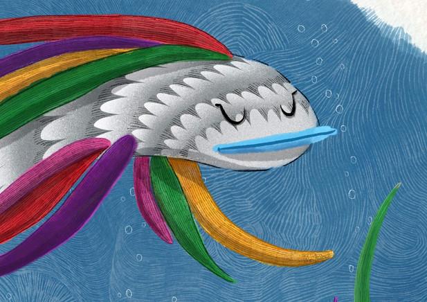 The Rainbowfish Is Swimming Close Up