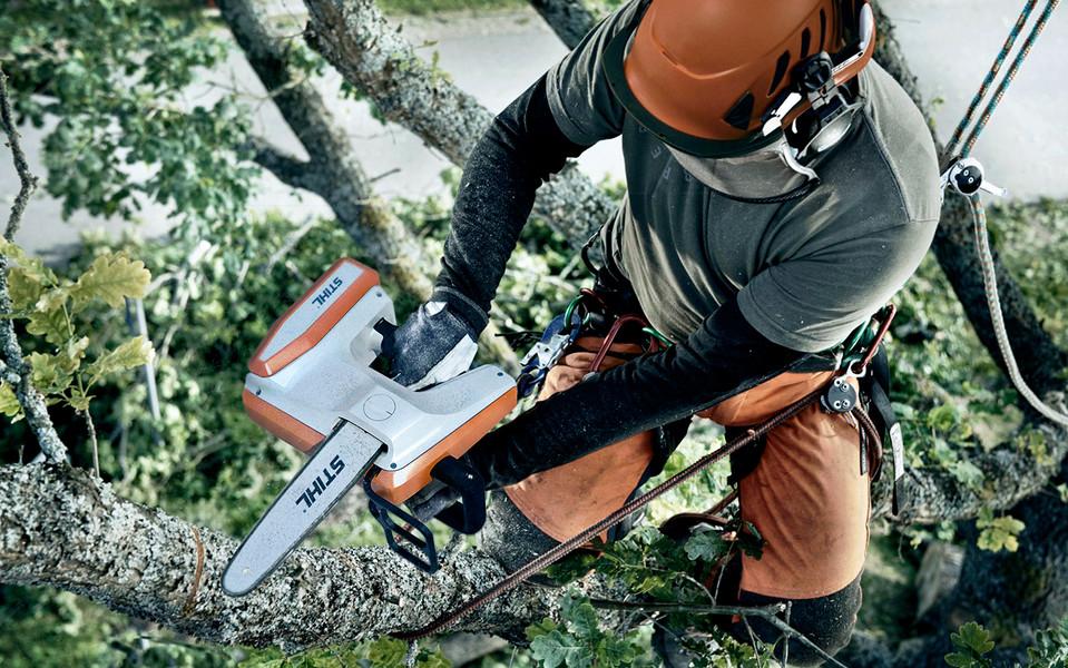 arborist saw