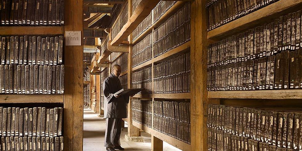 TREVISO - Seminario  Registri Akashici (I II maestria)