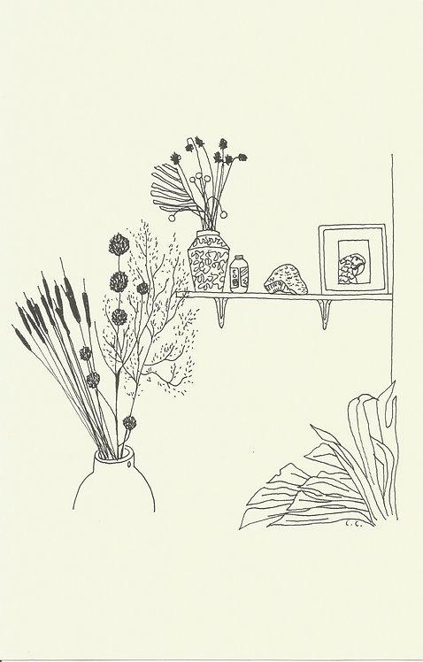 PLANTAS SECAS dibujado con bolígrafo Muji 0.5