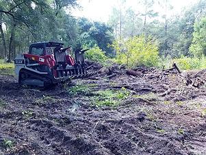 Tree debris, small tree trimming, volusia county fl, dumpster rental