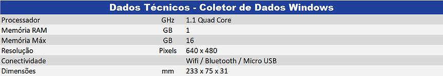 Coletor-de-Dados-Windows.png