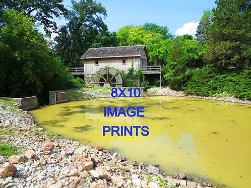 8x10 print