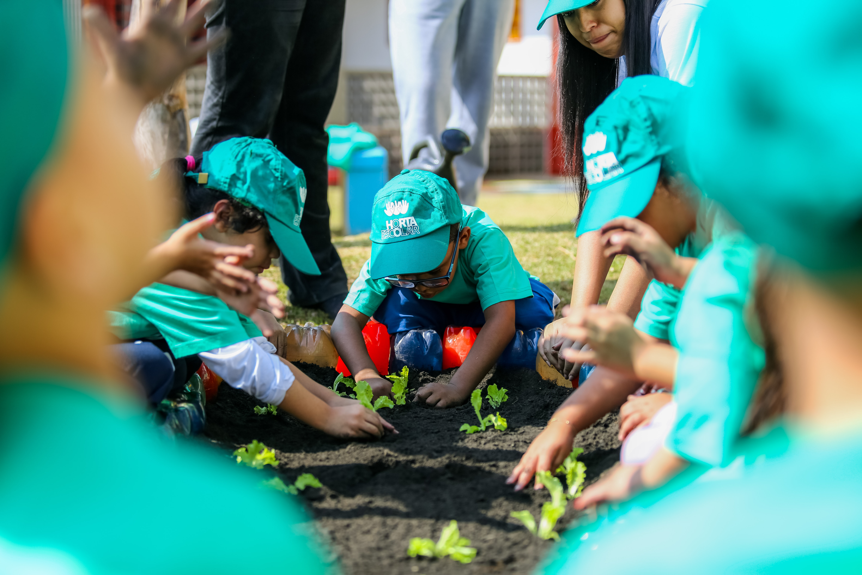 Projeto Horta Escolar Conexão Alelo