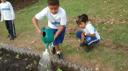 Projeto Horta Escolar