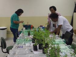 Oficina do Projeto Horta Escolar