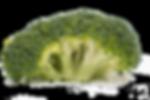 Broccoli 2.png