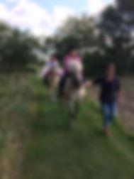 hesteridning 1.jpg