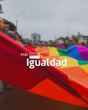 Más Igualdad Perú - ONG derechos - LGBTI - Orientación Sexual - Identidad de género.jpg