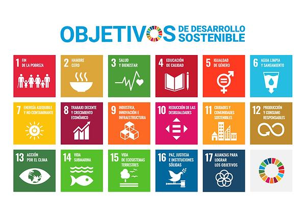 Objetivos Desarrollo Sostenible - Más Igualdad Perú - ONG derechos - LGBTI