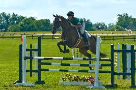 Antebellum Farm Rider.jpg