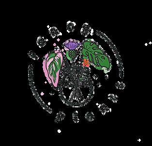 FancyPlants_master_logo_no_background.pn
