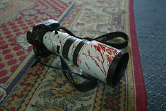 Fig. 3.12 Bloody camera.jpg