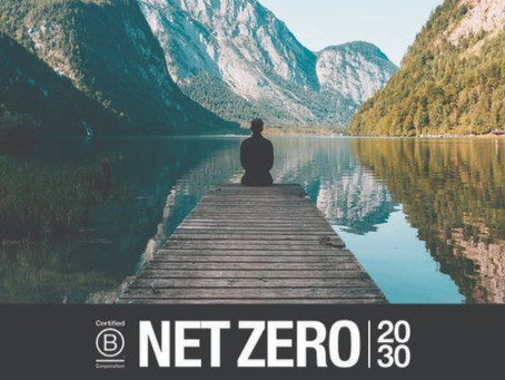 Compromiso Net Zero 20/30