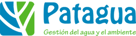 Patagua-Logo-1024x274.png