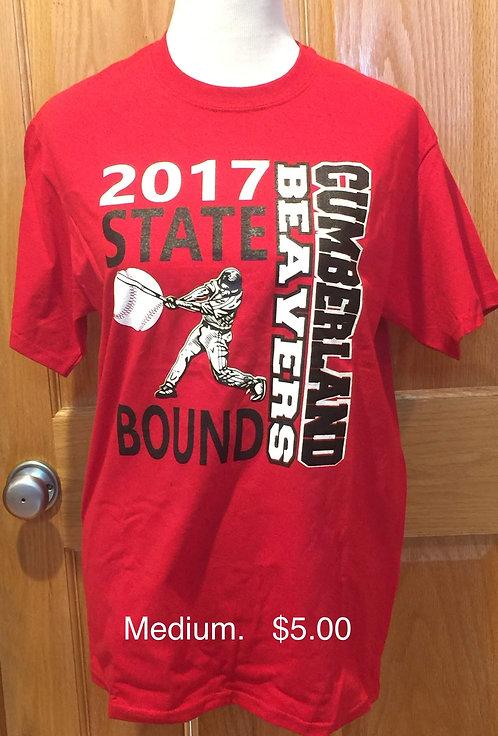 2017 State Baseball T