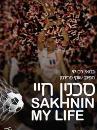 Sakhnin, My Life (2006)