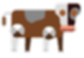 Breed Square Meater Calves