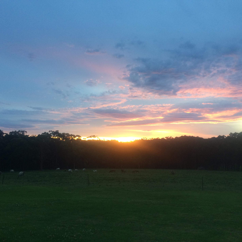 Sunset over the paddocks