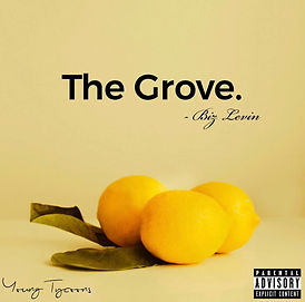 Biz Levin The Grove