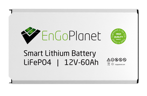 smart lithium lifepo4 battery for solar energy storage