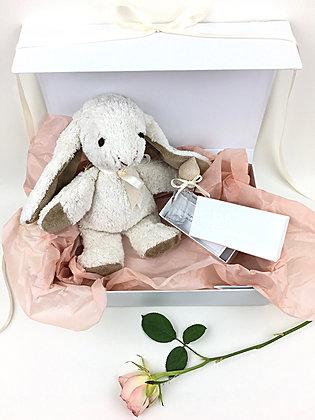 Geschenkbox SILBERSTERN