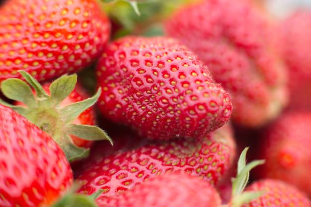 2018_April_04-Hood Strawberry Farm-0438-
