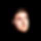 Seth E. Brown Emblem 3_21_20.png