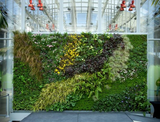 habitat-horticulture-living-walls-+-design-537x411.jpg
