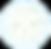 IICRC globe white.png