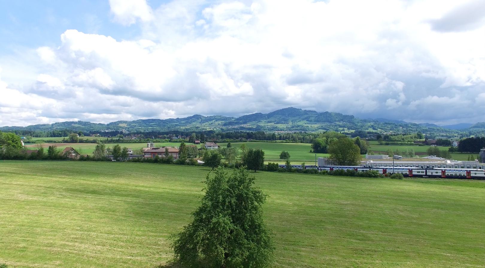 Blick nach Osten, Bachtel (Wändhüslen)