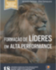 formacao de lideres em alta performance