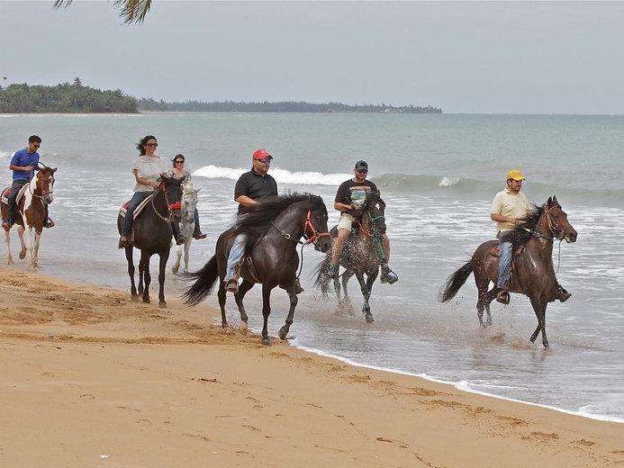 2.5-Hour-Beach-Horseback-Ride-image-2.jp