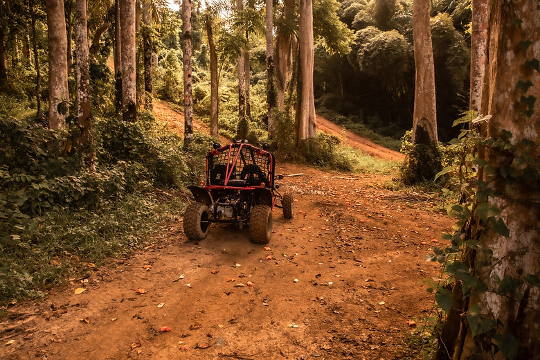 baja buggy off road tour.jpg