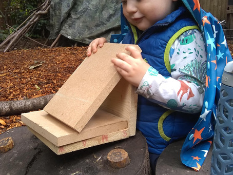 Weekly Activities. Week 3 - Build a nest box or birdhouse