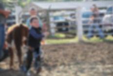 2016 Fair rodeo 2.jpg