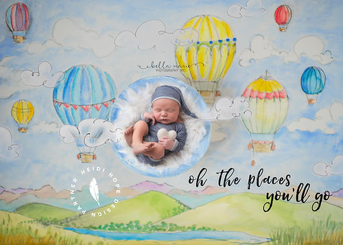 hot air balloons digital backdrop2-2.jpg
