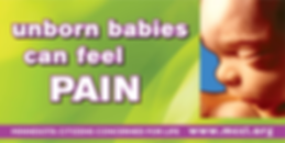 unborn babies can feel pain sign