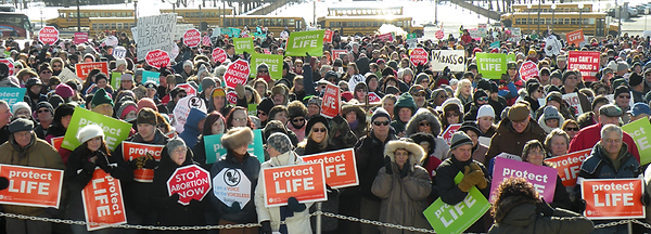 MCCL March for Life crowd holding signs