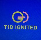 T1DI logo.jpg