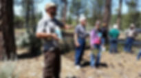 John Huddeston Master Arborist