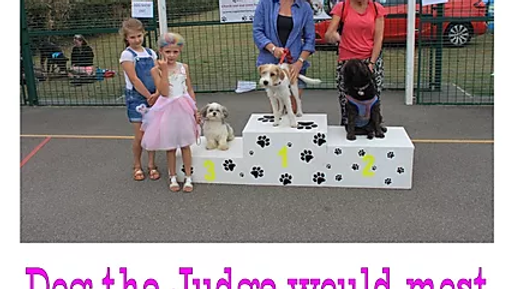 Dog the Judge would most like to take Home